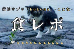 【ここな】猫も腸活の時代!kokonaサプリの口コミ実食レビュー&食べさせるコツ